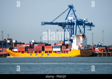 Container ship at container terminal in the port of Felixstowe, Suffolk, England, United Kingdom - Stock Photo