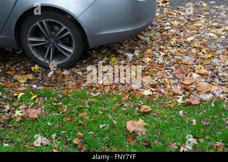A car on the roadside and kerb with autumn leaves scattered on the ground. - Stock Photo