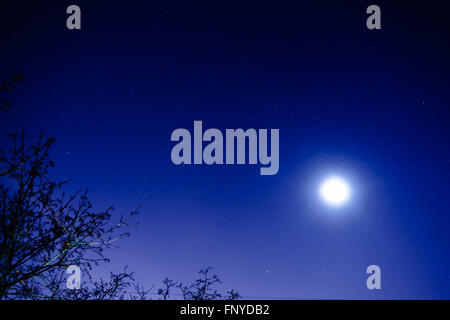 The starry sky and the moon. View from my window. Moon and star dust in the sky. - Stock Photo