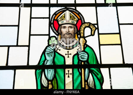 A stained glass window of Saint Patrick, holding a shamrock and staff, the patron saint of Ireland - Stock Photo
