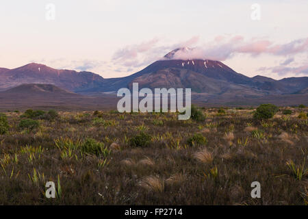 Mount Ngauruhoe volcano at sunset, Tongariro National Park, New Zealand - Stock Photo