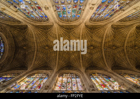 The ornate ceiling of Kings College Chapel, Kings College, University of Cambridge, England, United Kingdom. - Stock Photo