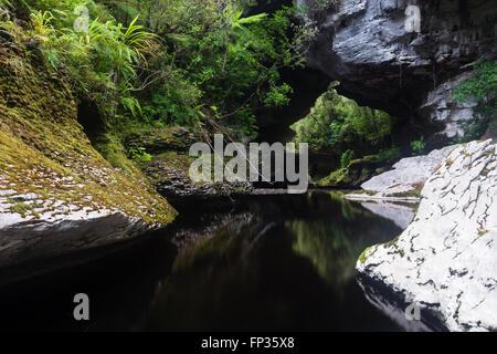 Honeycomb Hill Arch, Oparara basin, New Zealand - Stock Photo
