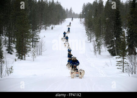 Salla husky safari. Lapland, Finland. Before the safari our guide will give you a driving lesson and tell you how to handle the