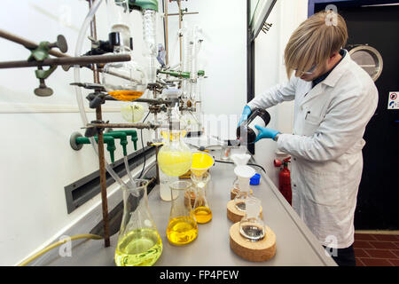 Experiment in a laboratory, Heinrich-Heine-University Duesseldorf, Germany - Stock Photo