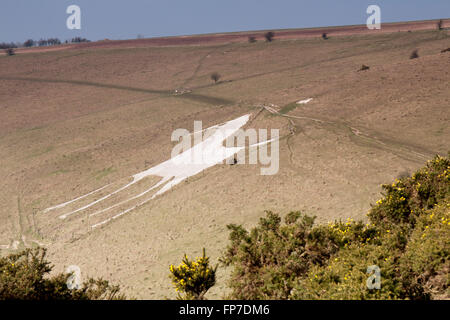 White horse figure carved in chalk Alton Barnes,Wiltshire,England. - Stock Photo