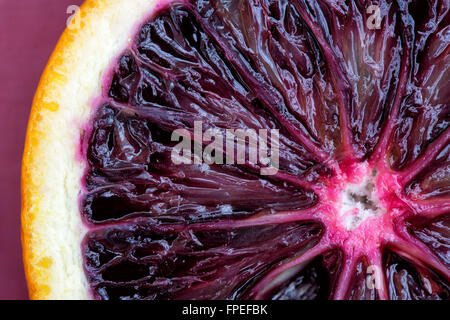 Citrus x sinensis. Blood Orange close up - Stock Photo