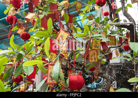 HO CHI MINH, VIETNAM - JANUARY 27, 2016: Decorated tree for Tet, the Vietnamese New Year which takes place on February - Stock Photo