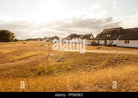 Houses in Neuendorf, Hiddensee Island, - Stock Photo
