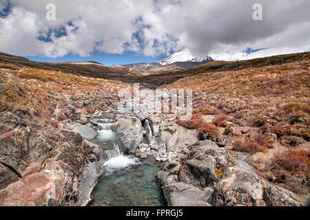 Creek in the Tongariro National Park, Manawatu-Wanganui, New Zealand - Stock Photo