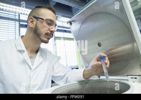 Young male scientist examining test tube in a pharmacy laboratory, Freiburg Im Breisgau, Baden-Württemberg, Germany - Stock Photo