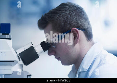 Young male scientist looking through microscope in an optical laboratory, Freiburg Im Breisgau, Baden-Württemberg, - Stock Photo
