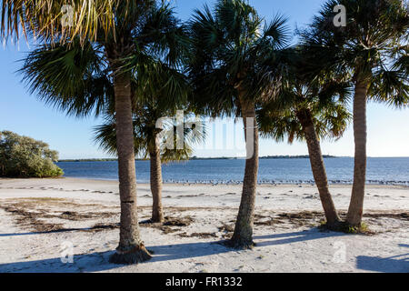 Florida FL New Port Richey Green Key Robert K Rees Memorial Park Gulf of Mexico public beach sand sabal palms palm - Stock Photo