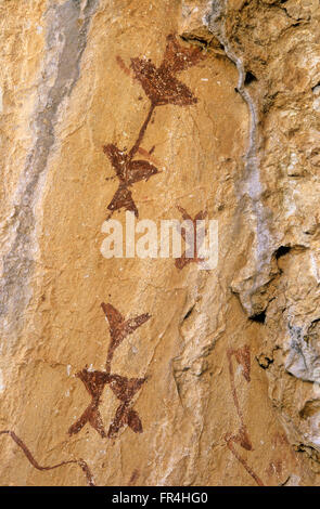 Rock paintings, Cave of The Letreros, Velez Blanco, Almeria province, Region of Andalusia, Spain, Europe - Stock Photo