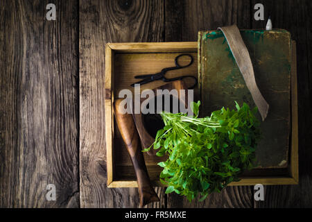Basil, a book and a mortar on a wooden table horizontal - Stock Photo