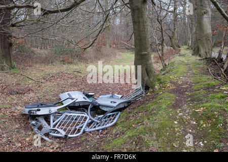 Fly Tipping Rubbish dumped in Ashridge Forest, Hertfordshire mail@davidlevenson.com - Stock Photo