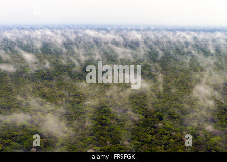 Aerial view of the water cycle evaporation phase after rain forest in the Amazon - Stock Photo