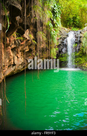 Lagoon with small waterfall, Annandale Falls; St. Georges, Grenada - Stock Photo