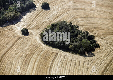 Aerial view of fields harvested recently and area of native forest preserved - legal reserve - Stock Photo