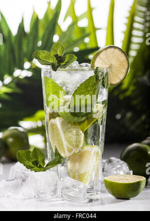 Mojito cocktail on tropical background - Stock Photo