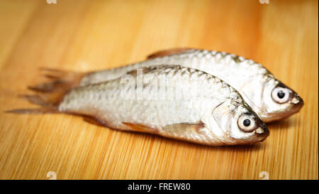 Swamp Barb of Indian subcontinent on wooden surface - Stock Photo