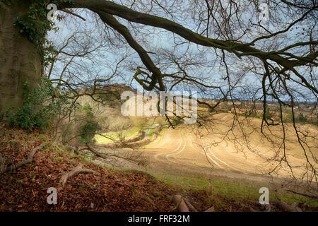 Chiltern landscape at Saunderton near West Wycombe, Buckinghamshire, England - Stock Photo