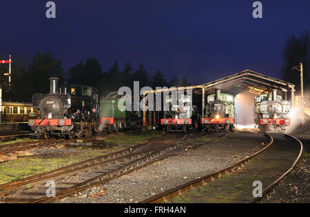 Steam on shed at night. A line up of locomotives on shed at Buckfastleigh - Stock Photo
