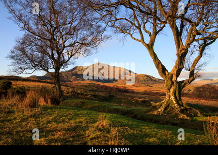 View of Moel Siabod from above Capel Curig - Stock Photo