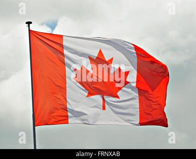 Canadian Flag fluttering in a brisk breeze. - Stock Photo