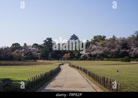 Korakuen Garden with Okayama Castle in the background, Okayama, Japan - Stock Photo