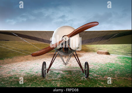 Old vintage monoplane airplane with a wooden propeller parked in a field in a landscape, front view - Stock Photo