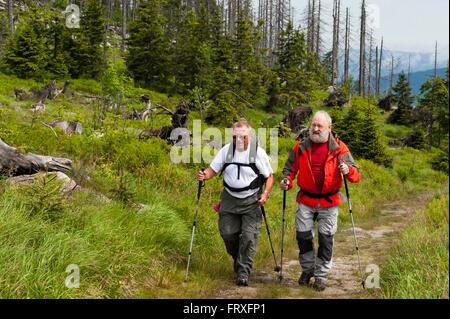 Hikers on the old salt trading route Goldener Steig, Mt. Dreisessel, Bavarian Forest, Bavaria, Germany - Stock Photo