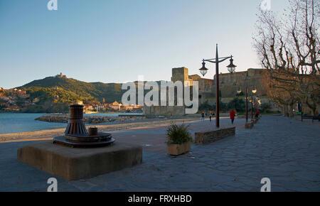 Collioure, Harbour and Château Royal des Templiers, Côte Vermeille, Mediterranean, Dept. Pyrénées-Orientales, Roussillon, - Stock Photo