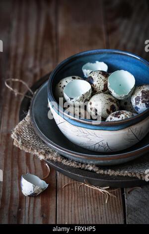 Quail eggs in a bowl - Stock Photo
