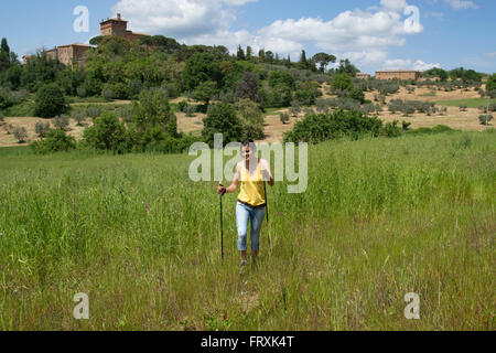 Woman nordic walking through a field at the foot of the Vinery Palazzo Massani, near San Quirico d'Orcia, Toskana, - Stock Photo