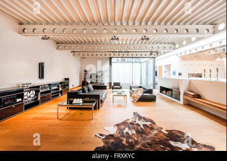 living room inside a bauhaus villa sauerland germany stock photo - Villa Sauerland