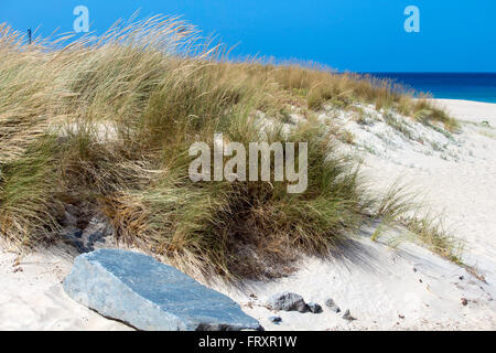 Sand dunes Lighthouse Beach Bunbury Western Australia. - Stock Photo