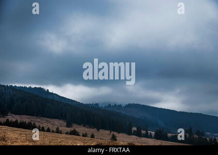 Dramatic rainy clouds in the mountains forest - Stock Photo