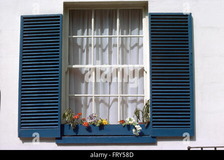 Close-up of a window with blue louvre shutters and net curtains - Stock Photo