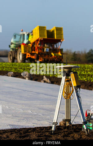 Burscough, Lancashire, UK 25th March, 2016.  UK Weather.  A landscape being covered in white fleece as farmers use - Stock Photo