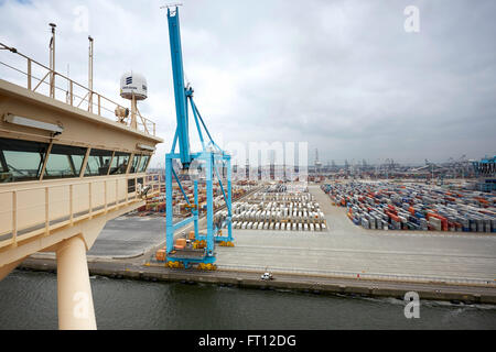 container crane in harbor, Rotterdam, South Holland, Netherlands