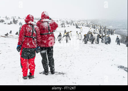 Two passengers of expedition cruise ship MS Hanseatic Hapag-Lloyd Cruises wearing red jackets admiring a large group - Stock Photo