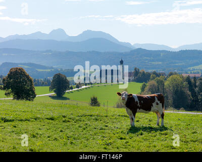 Church of Wilparting, Irschenberg, Bavaria, Germany - Stock Photo