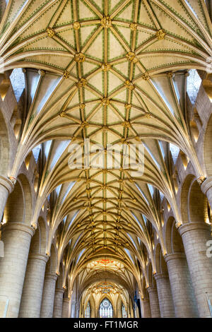 The Nave vaulted ceiling in Tewkesbury Abbey. Tewkesbury, Gloucestershire, England. HDR - Stock Photo