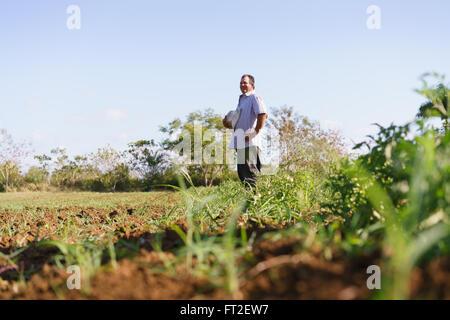 Farming and cultivations in Latin America. Middle aged hispanic farmer standing proud in tomato field, contemplating - Stock Photo