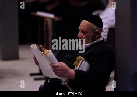 An Ultra Orthodox Jew reads the Megillah or the Scroll of Esther during the Jewish festival of Purim in the Western - Stock Photo