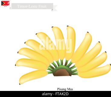 Timor-Leste Fruit, Illustration of Pisang Mas or Golden Banana. One of The Most Popular Fruits in Timor-Leste. - Stock Photo