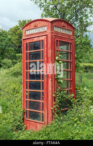 Traditional British phone box in the English countryside of the Test Valley being overgrown by ivy. - Stock Photo