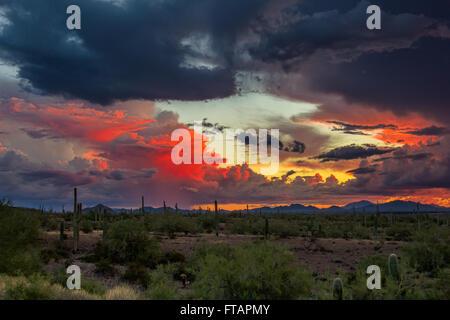 Stormy sunset sky in the desert in Picacho Peak State Park, Arizona, USA. - Stock Photo