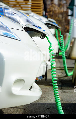 Kristianstad, Sweden - March 20, 2016: The charging of some white Nissan electrical cars. Green coiled cables are - Stock Photo